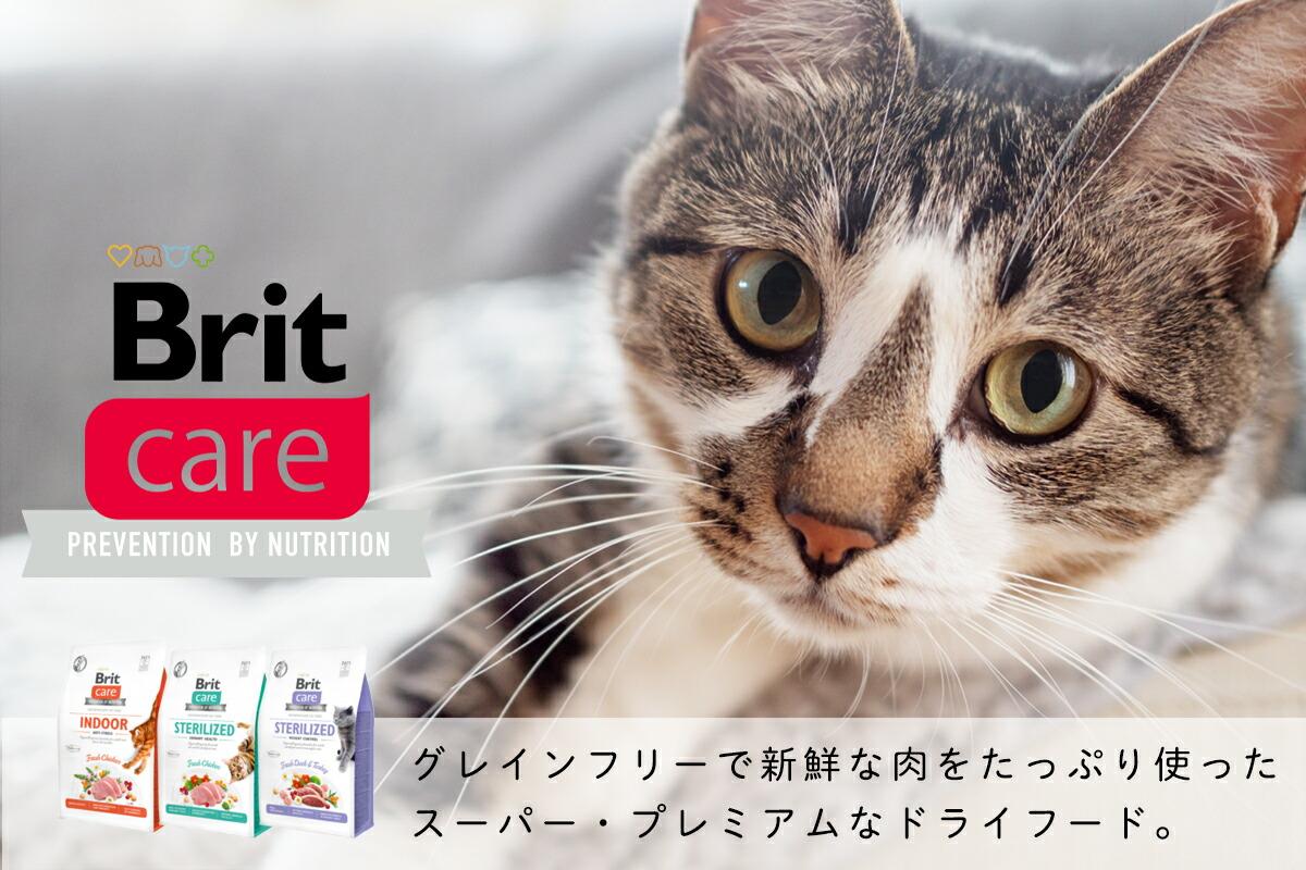 山崎実業 tower 猫の爪とぎスタンド